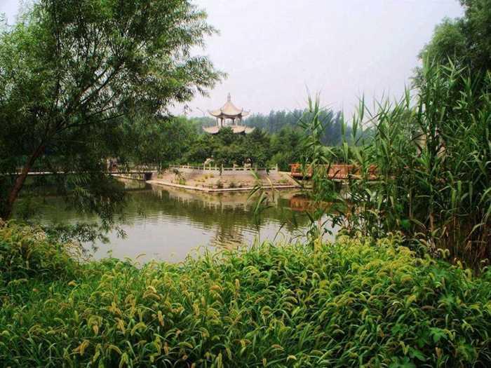 白洋淀是华北平原上最大的淡水湖,位于河北省保定市东约45公里
