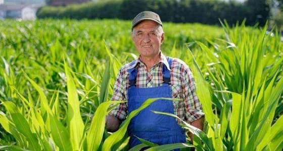 农业.png