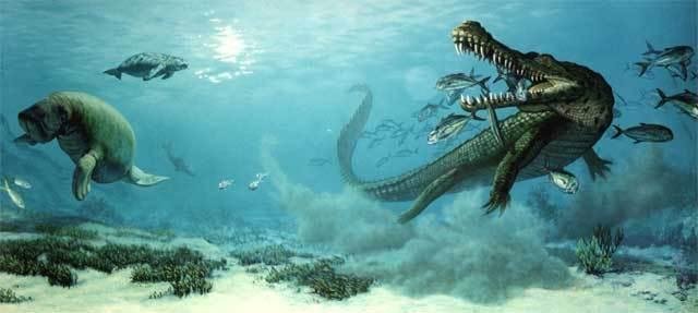壁纸 海底 海底世界 海洋馆 水族馆 640_287