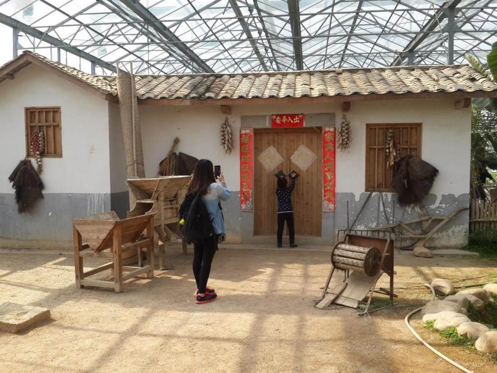 16:00-17:00乘车往返温暖的家 乘车集合地点:深圳市福田区金田路3038