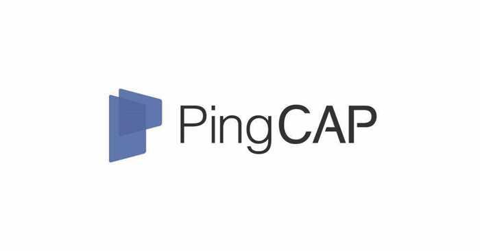 01-PingCAP-标准标识-横向组合.jpg