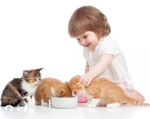 小孩抱猫情侣头像