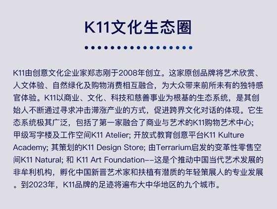 K11-页面_06.jpg