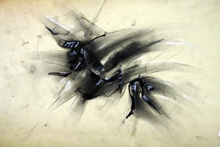 昆虫造型素描 步骤