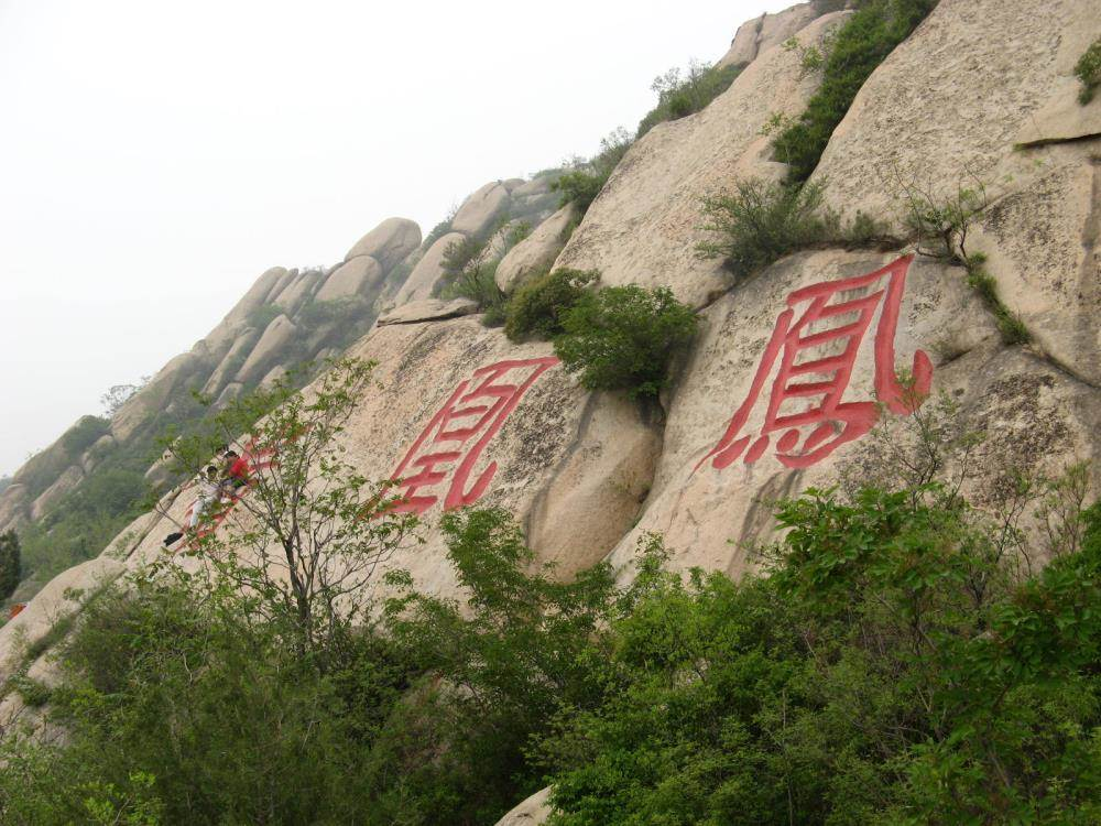 """""""是凤凰岭自然风景区的优势和特色."""