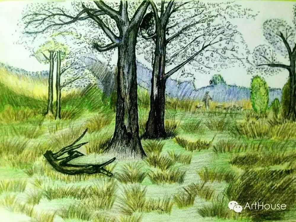 彩铅风景作品   动物千姿态   在这里,来自各行各业爱画画的朋友图片