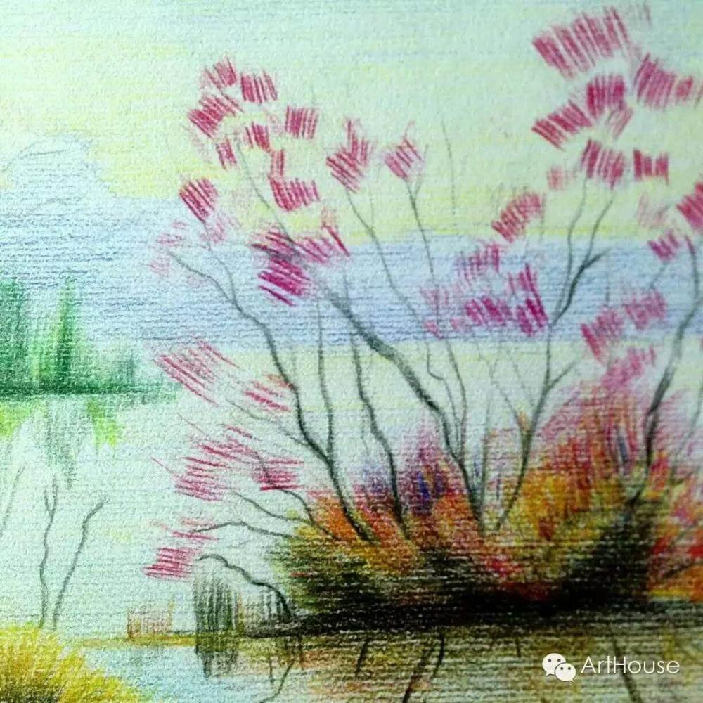 彩铅风景作品   动物千姿态   在这里,来自各行各业爱画画的朋友