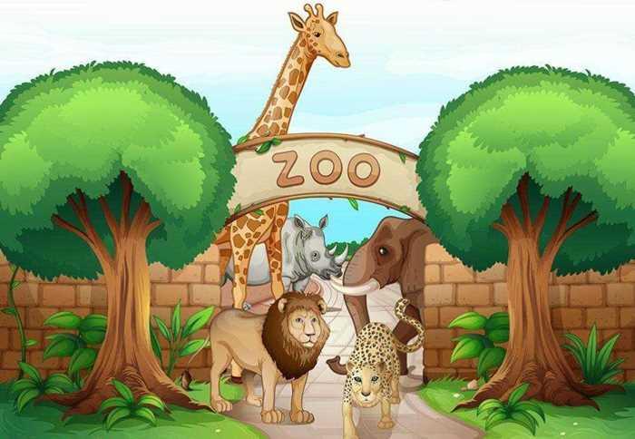 科普讲座 | 当我们逛动物园的时候我们应该做什么?