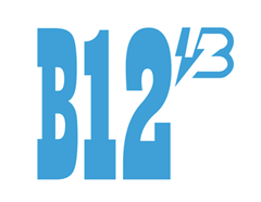 b12_副本.png