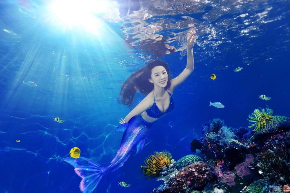 壁纸 海底 海底世界 海洋馆 水族馆 桌面 1000_666