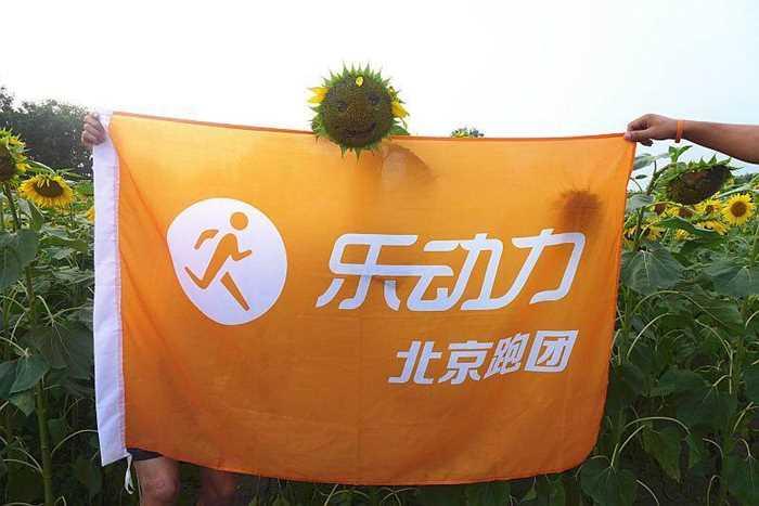 20:30-21:00 跑后拉伸 抽奖 跑团小伙伴拍摄的奥森北园的向日葵是这样