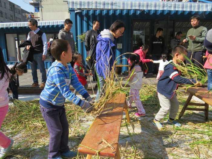 2016年11月5日自然课之:食物链&水稻收割活动_meitu_1.jpg