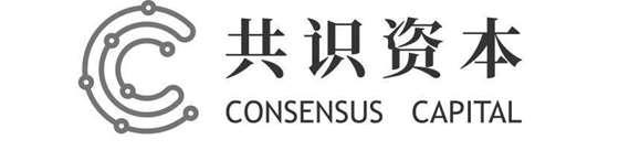 共识资本LOGO定稿(CMYK).jpg