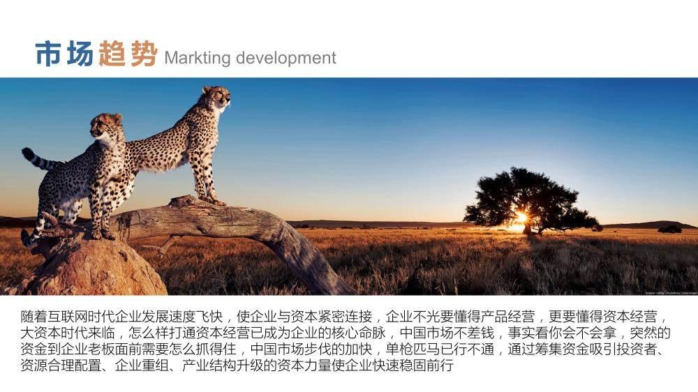FindLink资本峰会创业者版-2.jpg