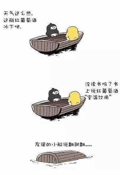 2.友谊小船说翻就翻_红葡萄酒侍酒温度.jpg
