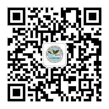 迎风向上 二维码(课程咨询).jpg