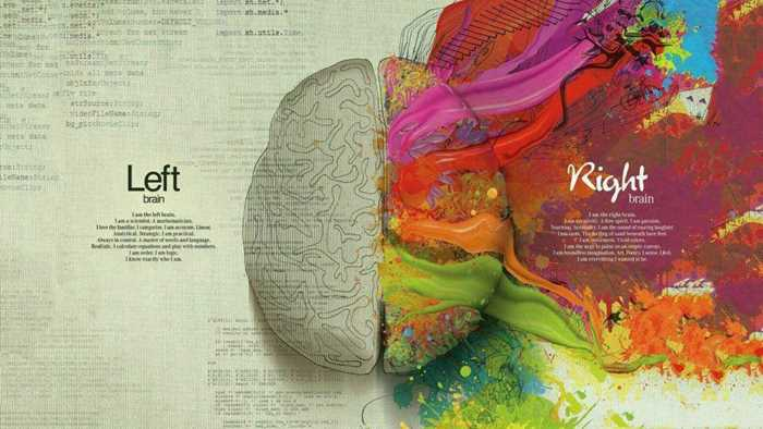 creative-左右脑.gif