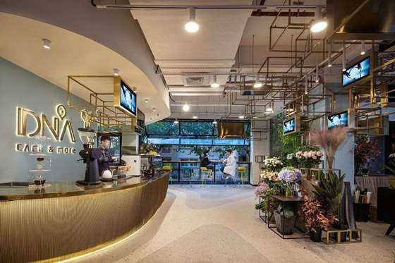 dna cafe & more