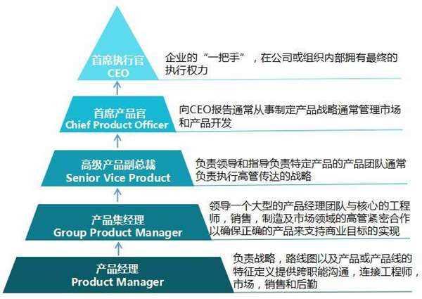 NPDP职业发展路径1.png