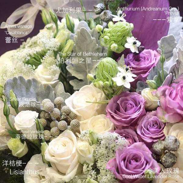 100_P_1430806383537.jpg