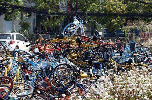 Bikegrave.jpg