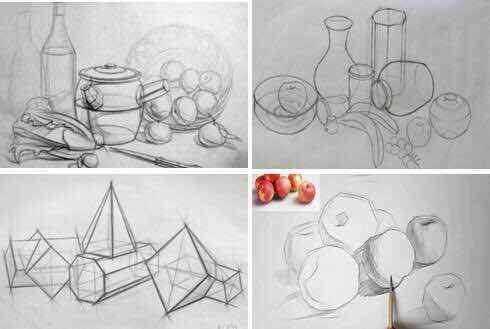 动物素描学习动物绘画的基础知识和步骤,掌握动物绘画理论和技巧.