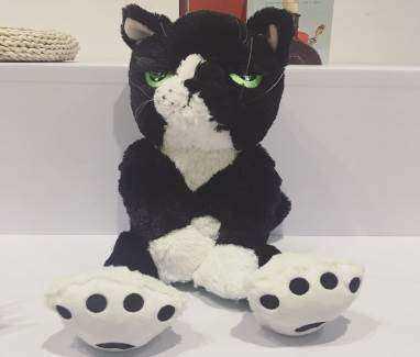 马丁猫2.jpg