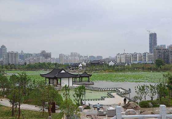 武汉6.png