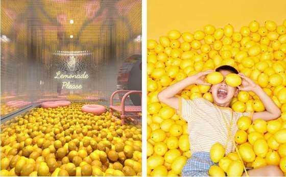 柠檬-01.jpg