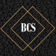 bcs区块链硅谷.jpg