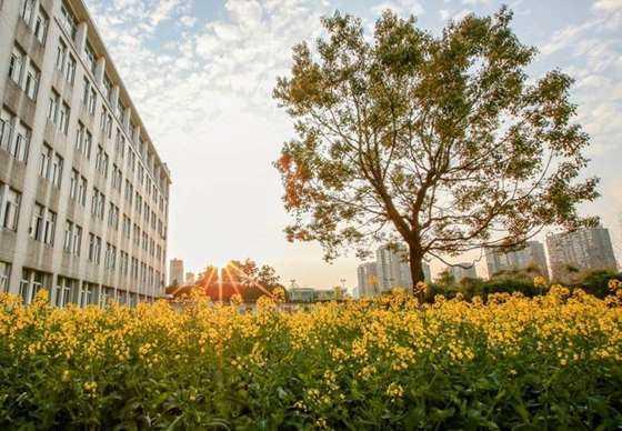 ZUCC campus.jpg