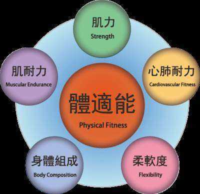 互动吧-输在起跑线,徒步赢在终点———儿童体适能体验课程(俊道馆体育)