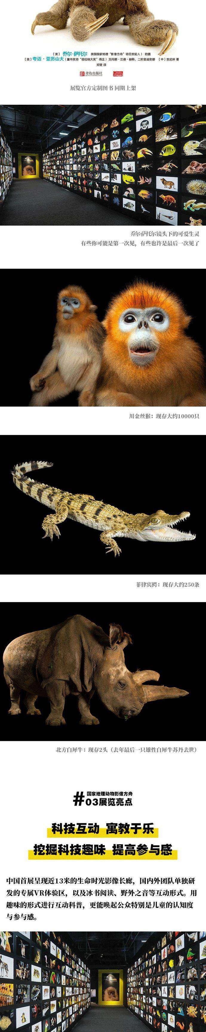 网易华东×国家地理展活动页面_04.gif