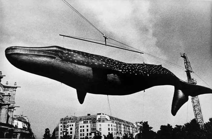 © DAIDO MORIYAMA,Paris,France,1971. Courtesy of see+ Gallery(Beijing).png