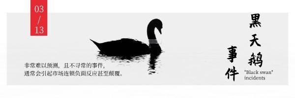黑天鹅.jpeg