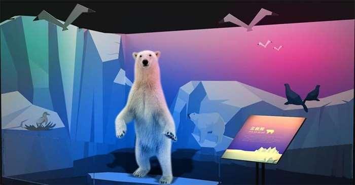 5、熊.jpg