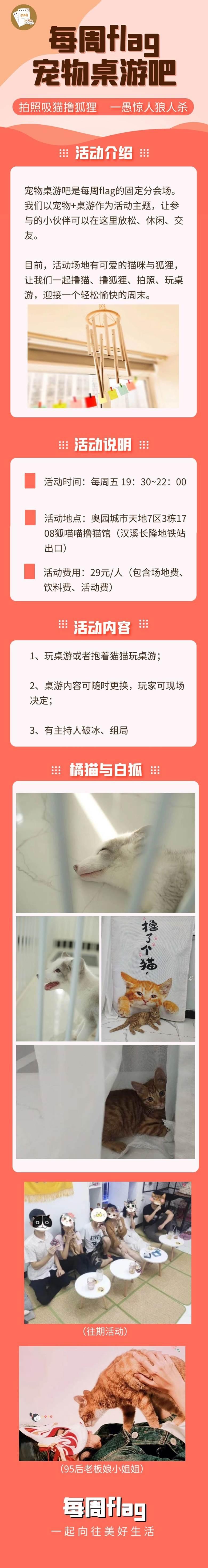 宠物桌游吧29(无二维码).jpg