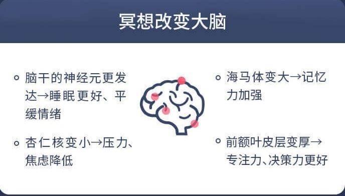 冥想与大脑.jpg