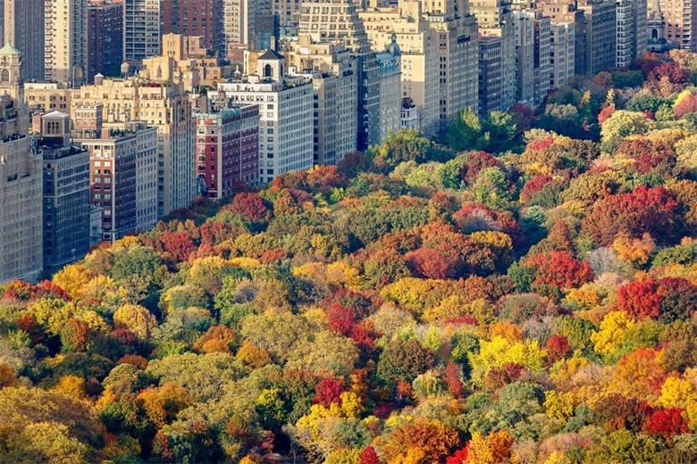纽约1.jpg