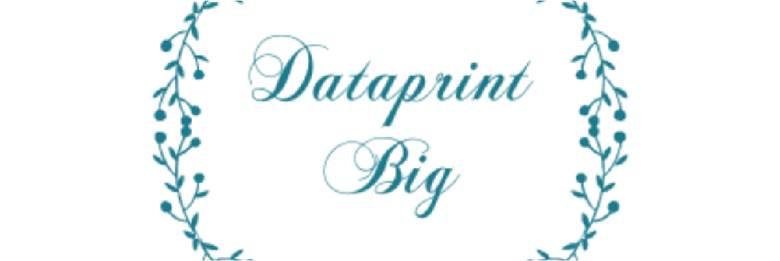 USA COMPANIES LOGOS_Pristine_Dataprint Big.jpg