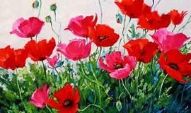 NO. 473期丹若 ~零基础油画、创作、临摹【Mikki Senkarik-那些花儿】