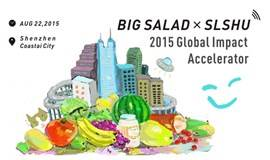 「REAL」--- Big Salad x SLUSH 2015 Global Impact Accelerator