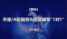 """【孵岛】天使/A轮融资&经营辅导""""1对1""""(第70期)"""