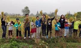 跟着孩子做农夫探路团农耕自然体验系列课程