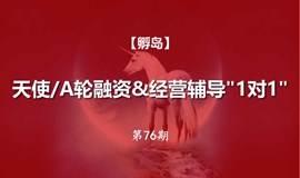 """【孵岛】天使/A轮融资&经营辅导""""1对1""""(第76期)"""