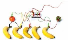 【科技小当家工作坊】神奇的水果钢琴