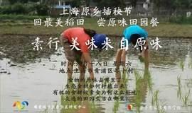 美味来自原味——上海原乡插秧节,回最美稻田,尝原味田园餐