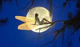 释梦——揭开潜意识的面纱