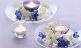(预告)似水流年 一路芬芳——安宁病房里的芳香照护