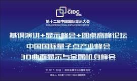 第十二届中国国际显示大会